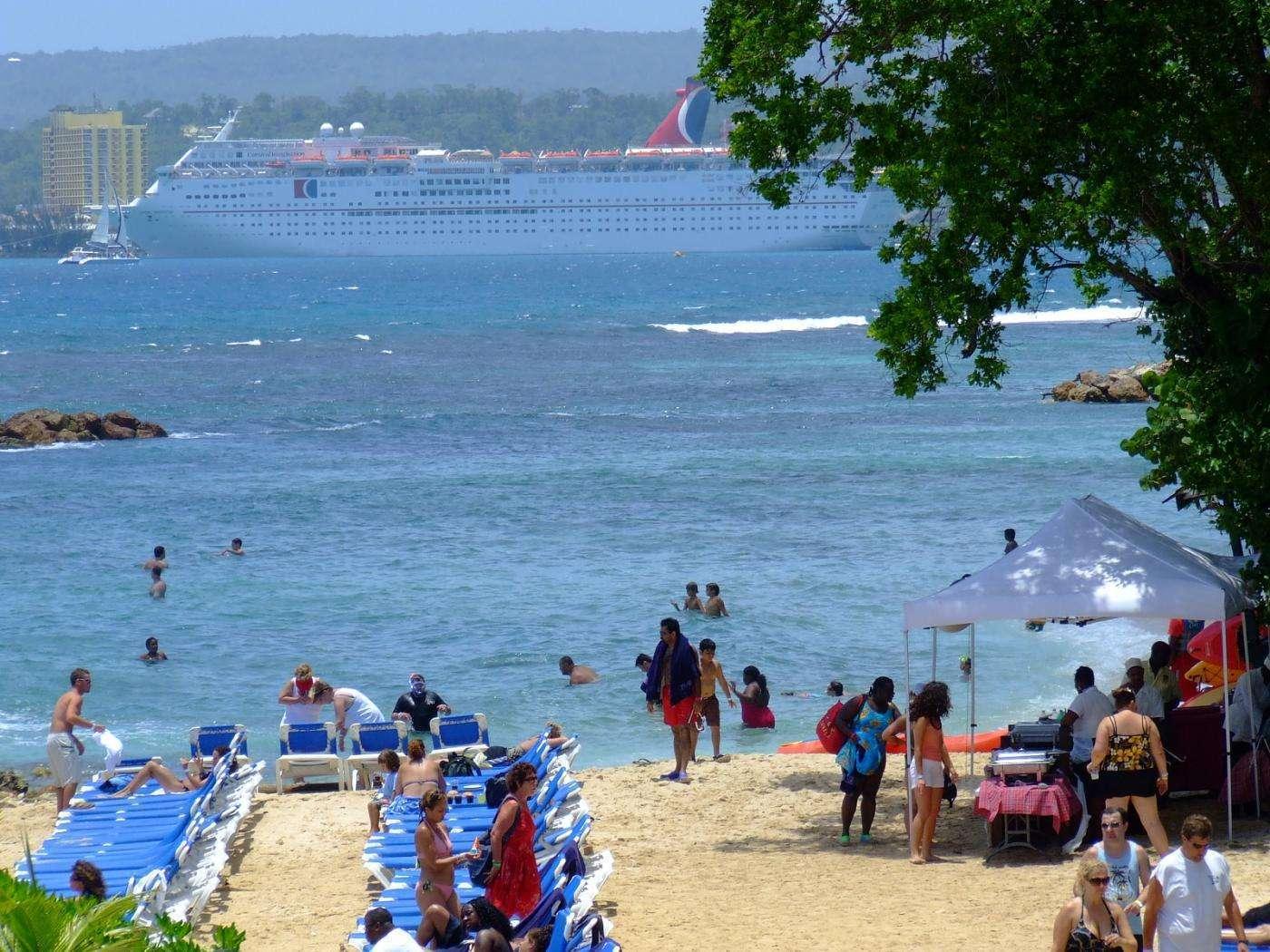 dolphin-cove-beach-jamaica