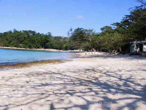 Winnifred Beach Jamaica 2